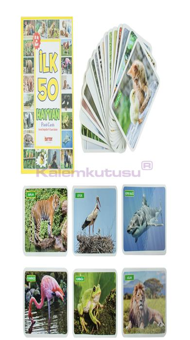 DIYTOY / FLASH CARDS İLK 50 HAYVAN